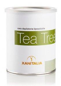 339_n_z_tea_tree